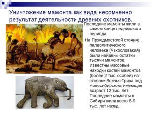 Уничтожение мамонта как вида несомненно результат деятельности древних охотни