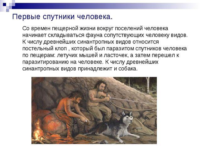 Первые спутники человека. Со времен пещерной жизни вокруг поселений человека...