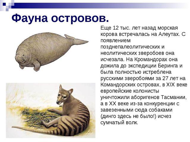 Фауна островов. Еще 12 тыс. лет назад морская корова встречалась на Алеутах....