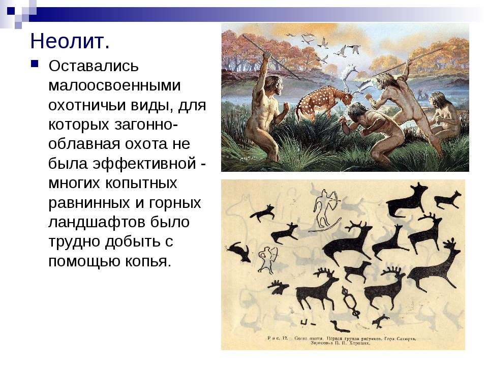 Неолит. Оставались малоосвоенными охотничьи виды, для которых загонно-облавна...