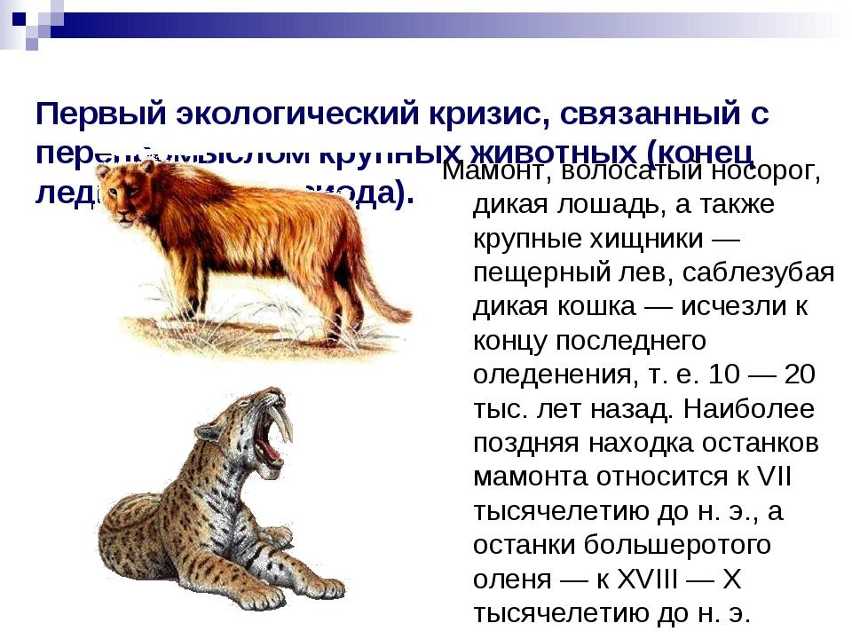 Первый экологический кризис, связанный с перепромыслом крупных животных (коне...