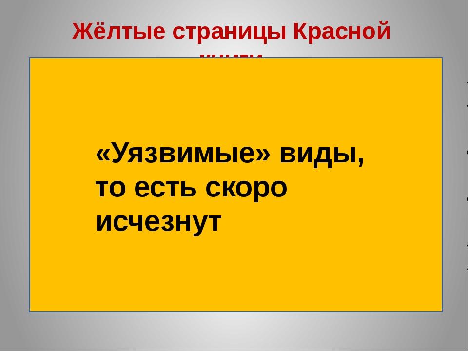 hello_html_1b096710.jpg