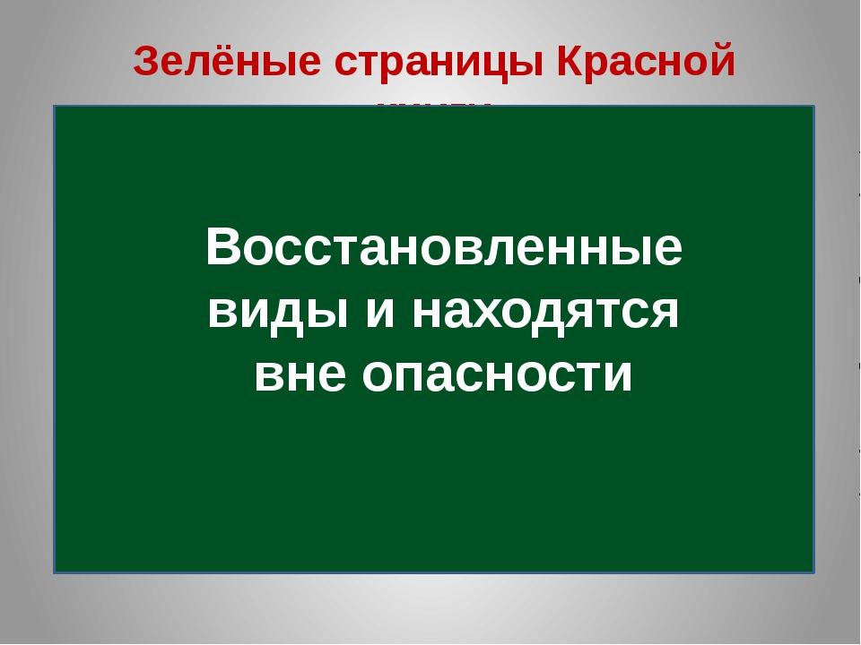 hello_html_46918f31.jpg