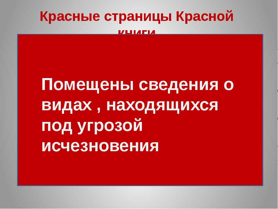 hello_html_m18b336a3.jpg