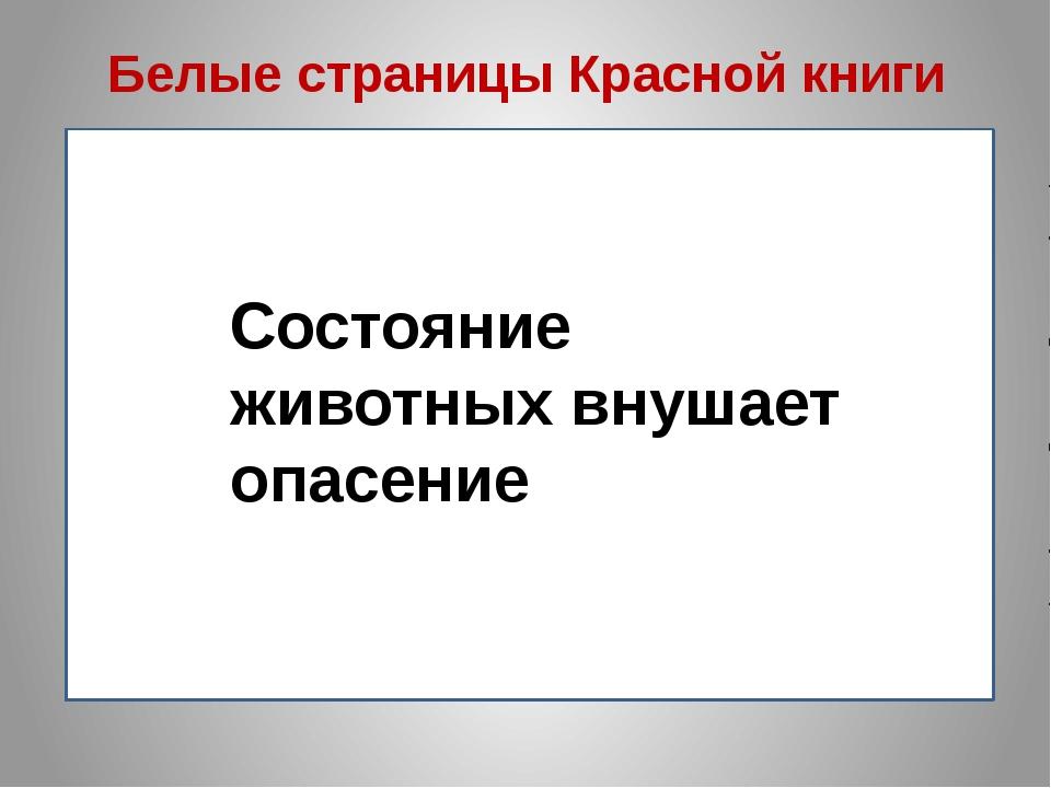 hello_html_m65954b61.jpg