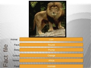 Fact file Round Plump Orange Africa Animals Face: Body: Colour: Home: Food: L