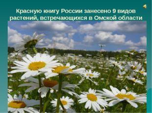 Красную книгу России занесено 9 видов растений, встречающихся в Омской област