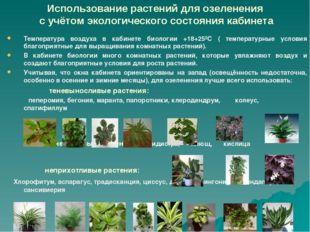 Использование растений для озеленения с учётом экологического состояния кабин