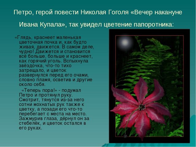 Петро, герой повести Николая Гоголя «Вечер накануне Ивана Купала», так увидел...