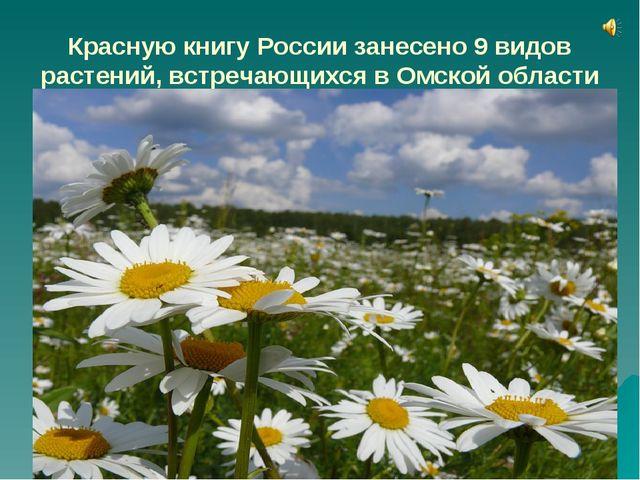 Красную книгу России занесено 9 видов растений, встречающихся в Омской област...