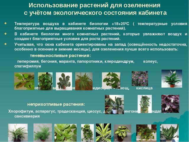 Использование растений для озеленения с учётом экологического состояния кабин...