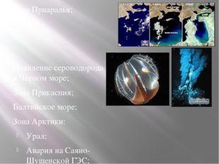 Зона Приаралья; Появление сероводорода в Черном море; Зона Прикаспия; Балтийс