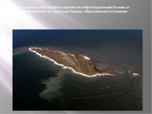 Один из островов Нью-Харбор охраняется нефтезащитными бонами от утечки, пробр