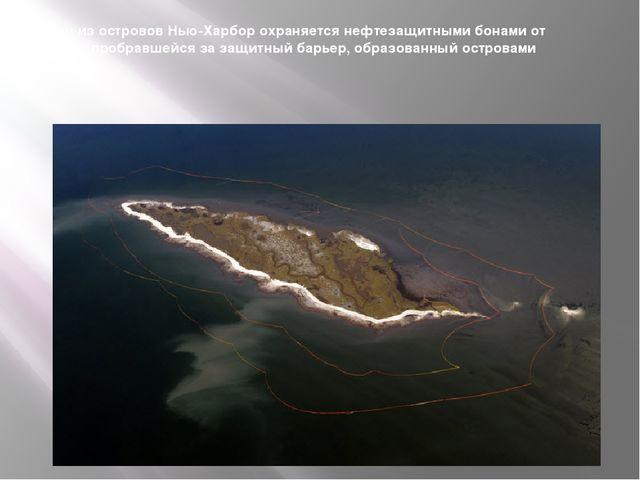 Один из островов Нью-Харбор охраняется нефтезащитными бонами от утечки, пробр...