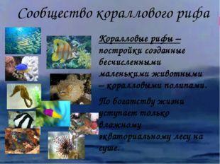 Коралловые рифы – постройки созданные бесчисленными маленькими животными – ко
