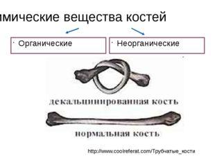 Химические вещества костей Органические Неорганические http://www.coolreferat