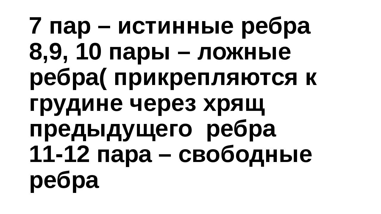 7 пар – истинные ребра 8,9, 10 пары – ложные ребра( прикрепляются к грудине ч...