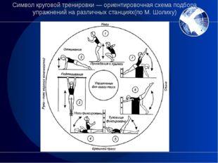 Символ круговой тренировки— ориентировочная схема подбора упражнений на разл