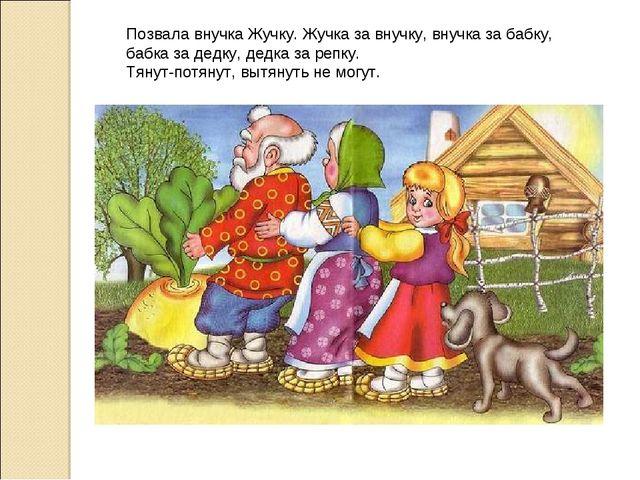 Позвала внучка Жучку. Жучка за внучку, внучка за бабку, бабка за дедку, дедка...