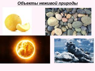 Объекты неживой природы