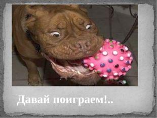 Давай поиграем!..