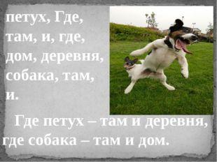 петух, Где, там, и, где, дом, деревня, собака, там, и. Где петух – там и дере