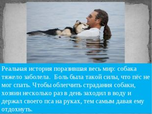 «Если собака – это всё, что у тебя есть, ты всё равно богатый человек». Луис