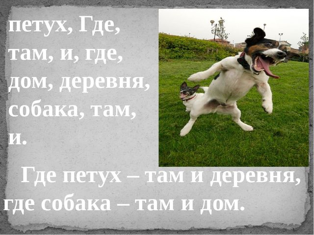 петух, Где, там, и, где, дом, деревня, собака, там, и. Где петух – там и дере...