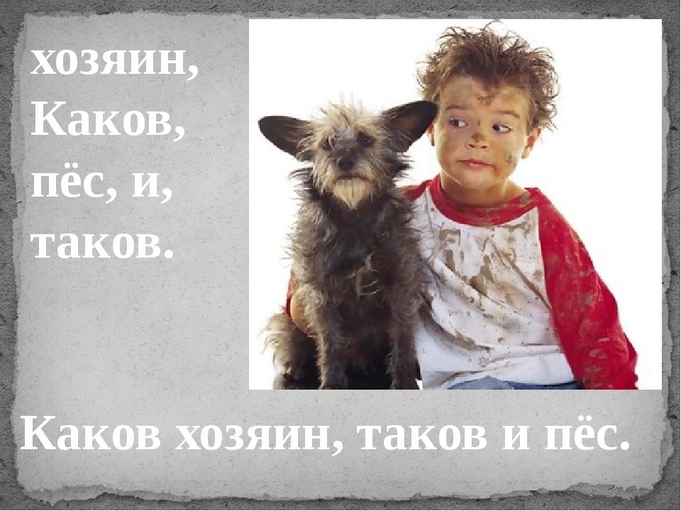 хозяин, Каков, пёс, и, таков. Каков хозяин, таков и пёс.