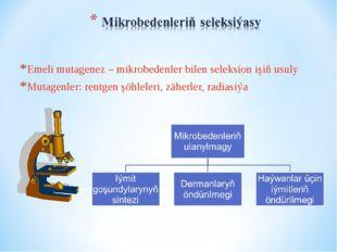 Emeli mutagenez – mikrobedenler bilen seleksion işiň usuly Mutagenler: rentge