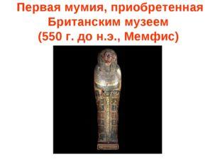Первая мумия, приобретенная Британским музеем (550 г. до н.э., Мемфис)