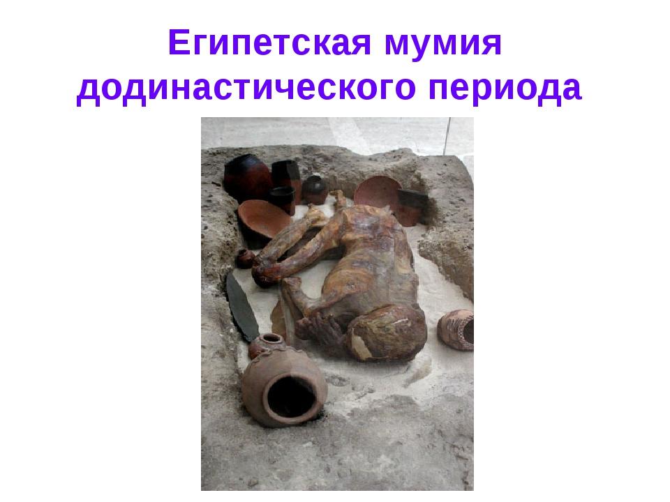 Египетская мумия додинастического периода