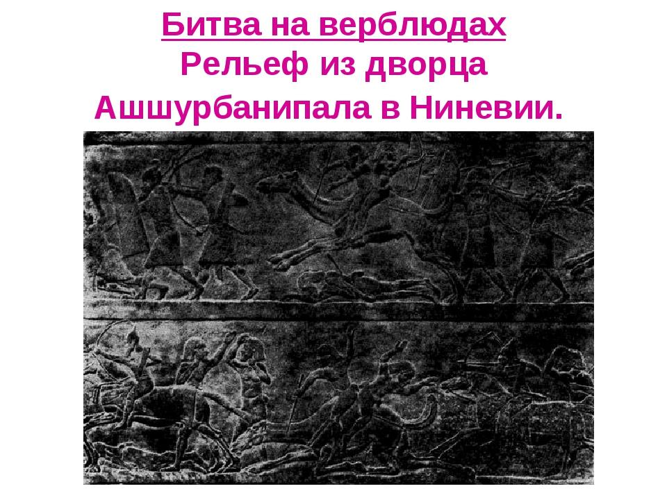 Битва на верблюдах Рельеф из дворца Ашшурбанипала в Ниневии.