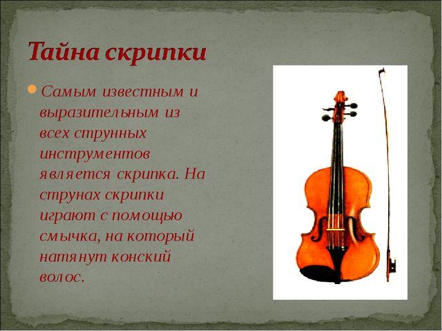 Самым известным и выразительным из всех струнных инструментов является скрипк...