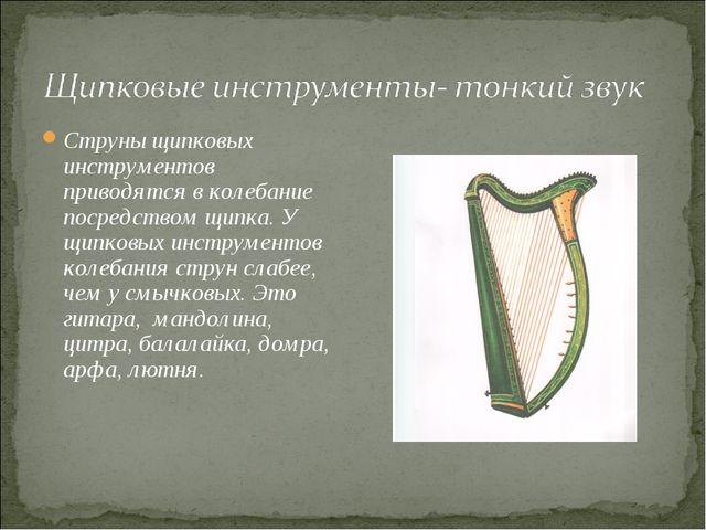 Струны щипковых инструментов приводятся в колебание посредством щипка. У щипк...