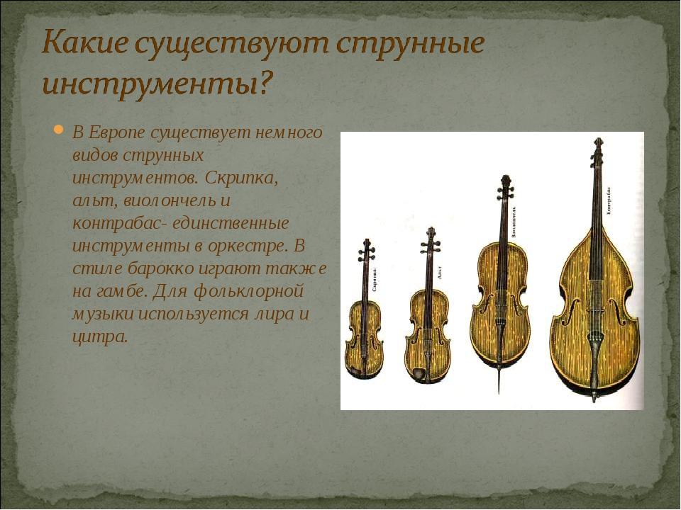 В Европе существует немного видов струнных инструментов. Скрипка, альт, виоло...
