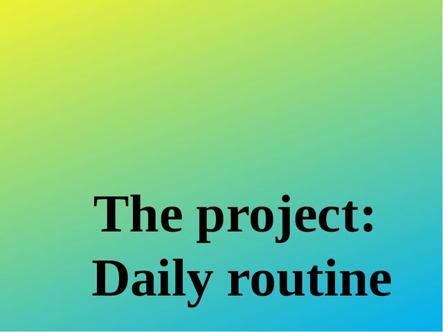 The project: Daily routine