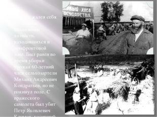 Не жалея себя трудились колхозники хозяйств, находившихся в прифронтовой зон