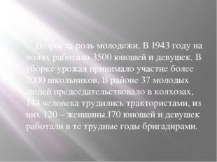Возросла роль молодежи. В 1943 году на полях работало 3500 юношей и девушек.