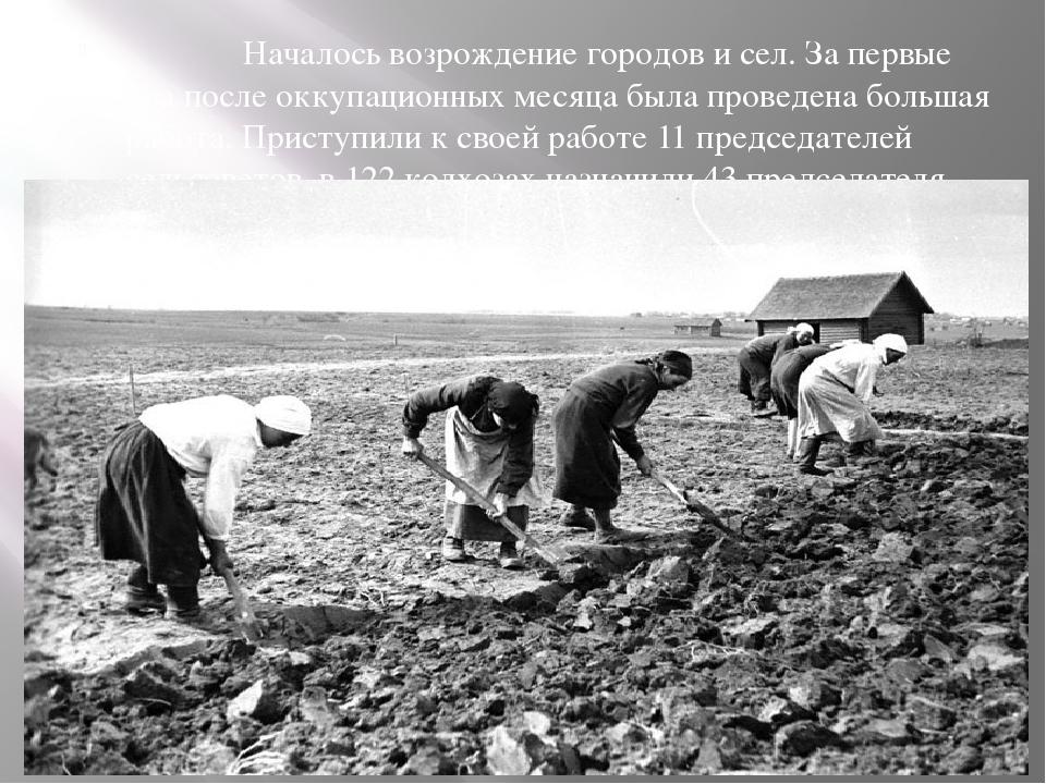 Началось возрождение городов и сел. За первые два после оккупационных месяца...