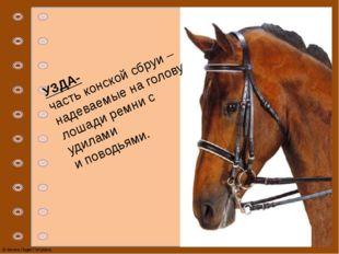 УЗДА- часть конской сбруи – надеваемые на голову лошади ремни с удилами и пов
