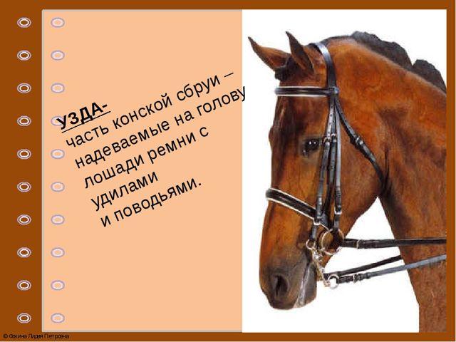 УЗДА- часть конской сбруи – надеваемые на голову лошади ремни с удилами и пов...