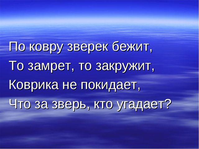 По ковру зверек бежит, То замрет, то закружит, Коврика не покидает, Что за зв...