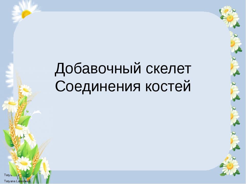 Добавочный скелет Соединения костей Tatyana Latesheva Tatyana Latesheva