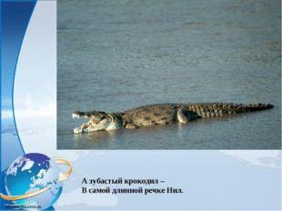 А зубастый крокодил – В самой длинной речке Нил.