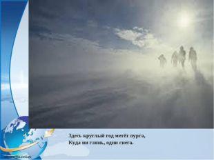 Здесь круглый год метёт пурга, Куда ни глянь, одни снега.