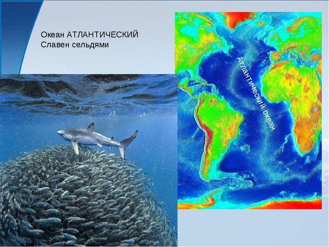 Океан АТЛАНТИЧЕСКИЙ Славен сельдями Атлантический океан