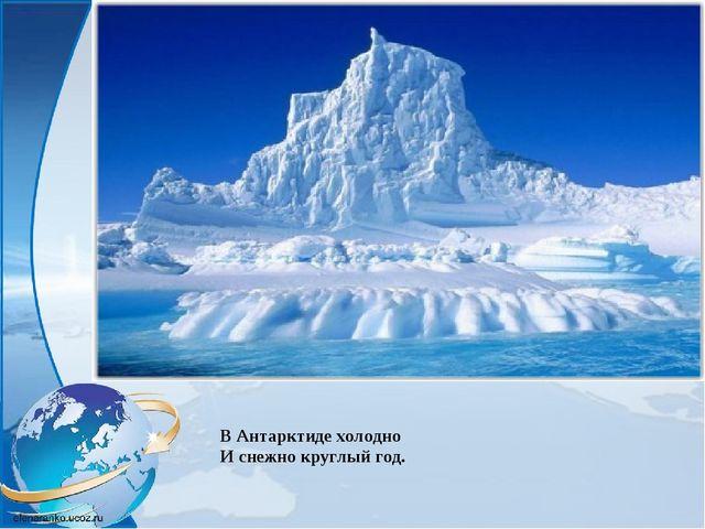 В Антарктиде холодно И снежно круглый год.