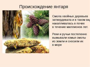 Происхождение янтаря Смола хвойных деревьев затвердевала и в таком виде накап