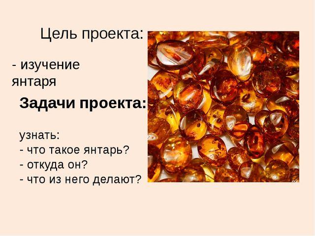 Цель проекта: узнать: - что такое янтарь? - откуда он? - что из него делают?...